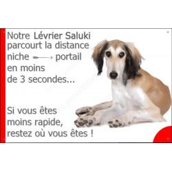 Plaque 24 cm 3SEC, Distance Niche - Portail, Lévrier Saluki Couché
