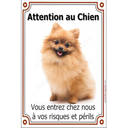 Plaque 24 cm LUXE, Attention au Chien, Spitz Loulou fauve orange Assis