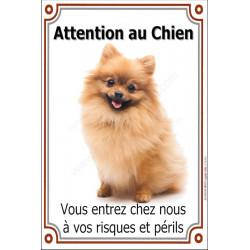 """Spitz fauve, plaque verticale """"Attention au Chien"""" 24 cm VL"""