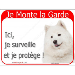 Samoyède, Plaque Portail rouge Je Monte la Garde, affiche panneau, tête photo race