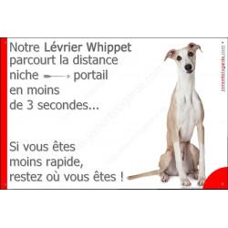 Plaque 24 cm 3SEC, Distance Niche - Portail, Lévrier Whippet Assis