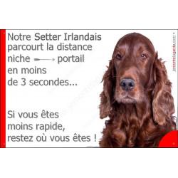 """Setter Irlandais, plaque """"distance Niche - Portail"""" 24 cm 3SEC"""
