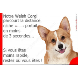 Plaque 24 cm 3SEC, Distance Niche - Portail, Welsh Corgi Tête