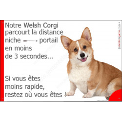 Plaque 24 cm 3SEC, Distance Niche - Portail, Welsh Corgi Assis