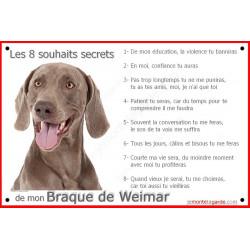 Plaque 24 cm CDT, 8 Souhaits Secrets, Braque de weimar Tête