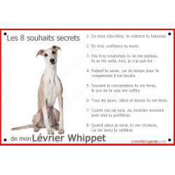 Plaque 24 cm CDT, 8 Souhaits Secrets, Lévrier Whippet Assis