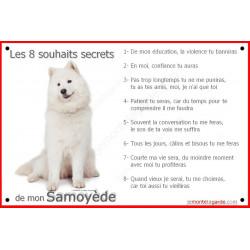 Samoyède Assis, pancarte Portail, affiche panneau, commandements éducation entier Attention au Chien