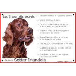 Plaque 24 cm CDT, 8 Souhaits Secrets, Setter Irlandais Tête