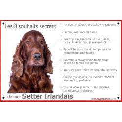 Plaque 24 cm CDT, 8 Souhaits Secrets, Sette Irlandais Tête sage