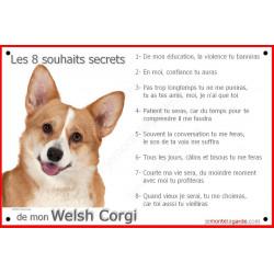 Plaque 24 cm CDT, 8 Souhaits Secrets, Welsh Corgi Tête