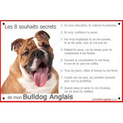 """Bulldog Anglais Tête, plaque """"Les 8 Souhaits Secrets"""" 24 cm CDT"""