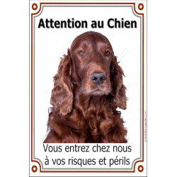 Plaque 24 cm LUXE, Attention au Chien, Setter Irlandais Tête Sage