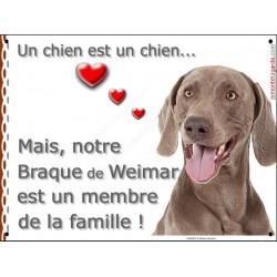 """Plaque """"Un chien est un Membre de la Famille"""" Braque de Weimar Tête pancarte panneau affiche"""
