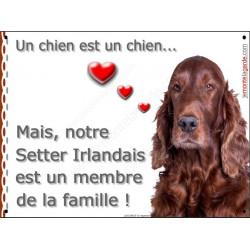 Plaque portail LOVE Membre de la Famille, Setter Irlandais Tête sage attention au chien affiche panneau pancarte