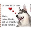 """Husky Gris Tête, plaque """"Membre de la Famille"""" 24 cm LOVE"""