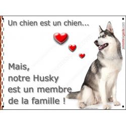 Plaque 2 Tailles LOVE Membre de la Famille, Husky Gris Assis