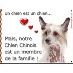 Plaque 2 Tailles LOVE Membre de la Famille, Chien Chinois à Crête Tête