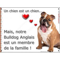 Bulldog Anglais Assis, plaque Portail Attention, un chien est un chien, pancarte affiche panneau entier bouledogue Fauve marron