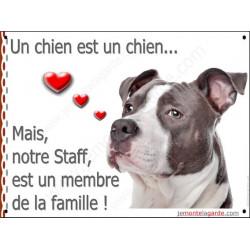 Am-Staff Bleu Tête, Plaque un chien est un chien, membre de la famille, affiche panneau pancarte American Staff gris