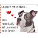 Plaque 16 cm LOVE Membre de la Famille, Am-Staff Bleu