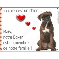 """Boxer Bringé Assis, plaque """"Membre de la Famille"""" 24 cm LOVE"""