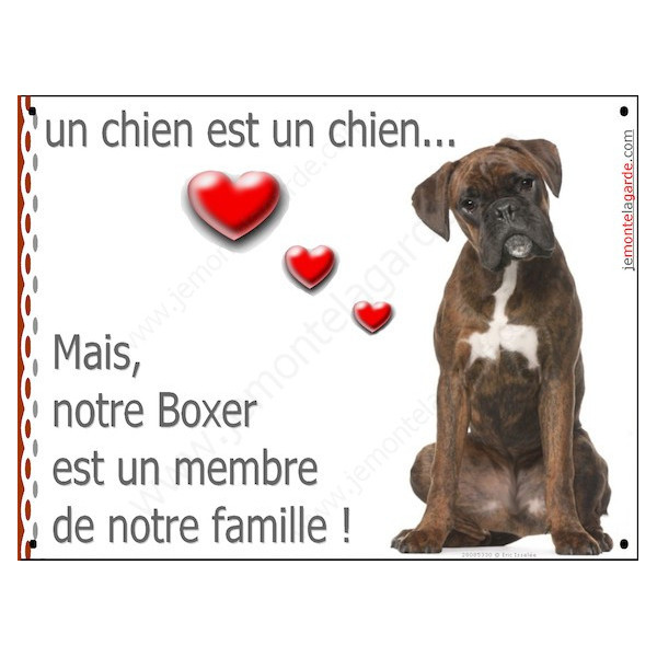 Boxer Bringé Assis, Plaque Portail un chien est un chien, membre de la famille, pancarte, affiche panneau