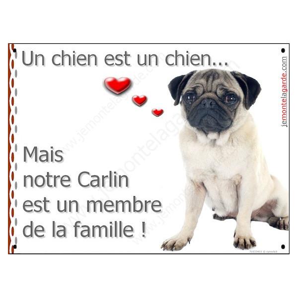 Carlin Assis, Plaque Portail un chien est un chien, membre de la famille, pancarte, affiche panneau