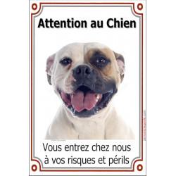 Plaque 24 cm LUXE, Attention au Chien, Bouledogue Américain blanc tâche fauve Tête