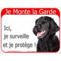 """Flat Coated Retriever Tête, plaque portail rouge """"Je Monte la Garde"""" 2 Tailles RED A"""