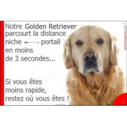 Golden Retriever Tête, Plaque Portail distance niche-portail 3 secondes, pancarte, affiche panneau Retriver