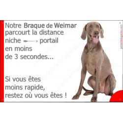 """Weimar Assis, plaque humour """"distance Niche - Portail"""" 24 cm 3SEC"""