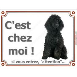 Caniche Noir Assis, Plaque portail C'est Chez Moi panneau affiche pancarte Attention au Chien