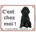 """Caniche Noir Assis, plaque """"C'est Chez Moi !"""" 3 tailles LUX A"""