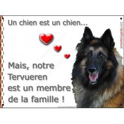 Pancarte portail Attention au Chien qui met en valeur votre Berger Belge Tervueren, car ce chien est un membre de la famille !