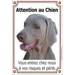 """Braque de Weimar Tête, plaque  verticale """"Attention au Chien"""" 24 cm LUX"""