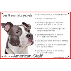 Plaque 24 cm CDT, 8 Souhaits Secrets, Am-Staff Bleu Tête
