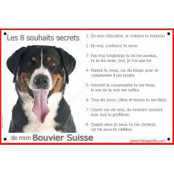 Bouvier Suisse Tête, Panneau Portail, affiche panneau, plaque commandements éducation Attention au Chien