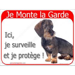 """Teckel Poils Durs, plaque rouge """"Je Monte la Garde"""" 2 Tailles RED-A"""
