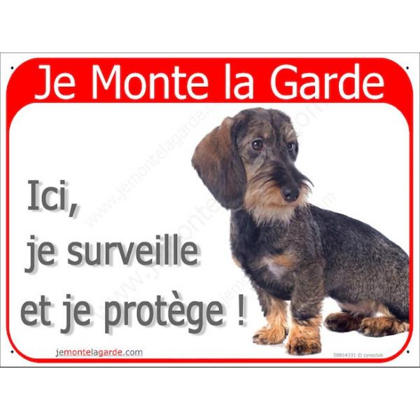 Teckel Poils Durs Assis, Plaque Portail rouge Je Monte la Garde, surveille protège, pancarte, affiche panneau