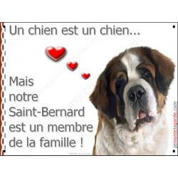 St-Bernard, Plaque Portail un chien est un chien, membre de la famille, pancarte, affiche panneau Saint-Bernard