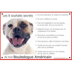 """Bouledogue Américain Tête, plaque """"8 Souhaits Secrets"""" 24 cm CDT"""