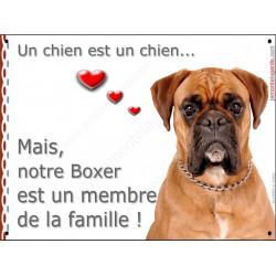 Boxer Fauve tête, plaque Attention, un chien est un chien, affiche panneau pancarte attention ce chien est un membre de la famil