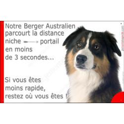 Berger Australien Tricolore noir tête, Plaque Portail humoristique, pancarte affiche panneau drôle, parcourt distance niche port