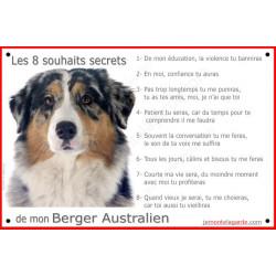Berger Australien Bleu Merle tête, Panneau Portail, affiche panneau, plaque commandements éducation Attention au Chien