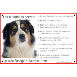 Plaque 24 cm CDT, 8 Souhaits Secrets, Berger Australien Tricolore Noir Tête