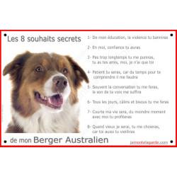 Berger Australien Tricolore Rouge tête, Panneau Portail, affiche panneau, plaque commandements éducation Attention au Chien