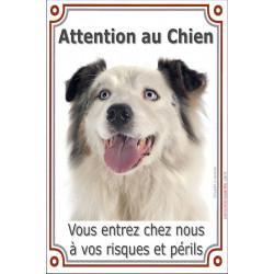 Plaque 24 cm LUXE, Attention au Chien, Berger Australien Blanc et Bleu Merle Tête