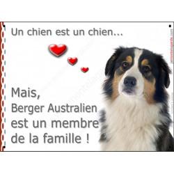 Plaque 2 Tailles LOVE Membre de la Famille, Berger Australien Tricolore noir tête
