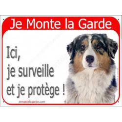 Berger Australien Bleu Merle tête, Panneau Portail rouge Je Monte la Garde, affiche plaque pancarte