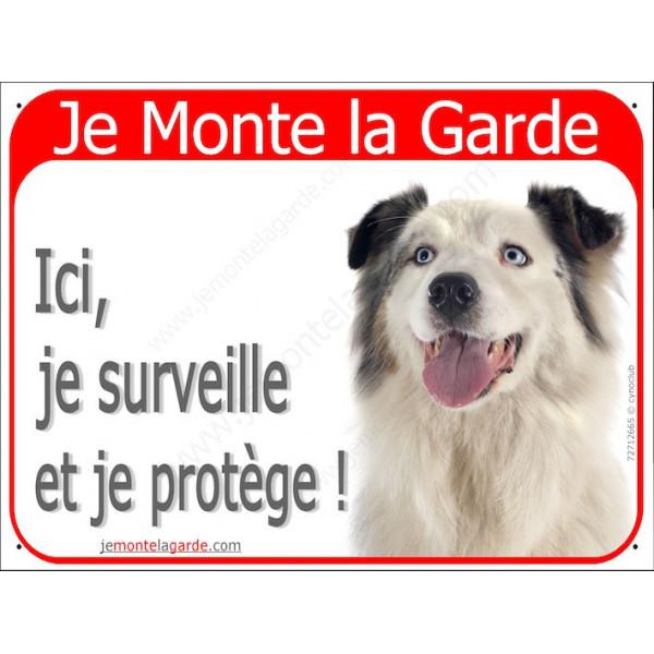 Berger Australien Blanc et Bleu Merle tête, Panneau Portail Je Monte la Garde, affiche plaque pancarte